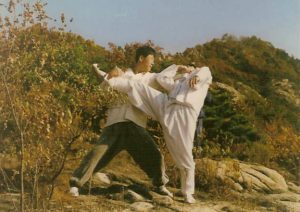 Defence against a kick at hapkido school. Grab hold of kicking leg and attack the throat.